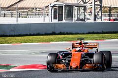 IMG_7523 (PandaStudio.fr) Tags: mclaren stoffelvandoorne vandoorne formuleun formulaone formule1 f1 f1testdays barcelonatestdays barcelona racing race pirelli orange testingdays