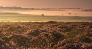 Baslow Edge Dawn Mists