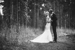 I & J (Jani Kautto) Tags: blackandwhite bokeh 85l 5d couple forest love dof depth janikautto wedding kiss punkaharju