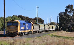 8152 is shutdown on a rake of grain wagons in Murtoa yard (bukk05) Tags: 8162 railpage:class=47 railpage:loco=8162 rpaunsw81class rpaunsw81class8162 81class wimmera westernstandardgaugeline wheat wagons winter explore export engine emd electromotivediesel emd16645e3b railway railroad railpage rp3 rail railwaystation railwaystations train tracks tamron tamron16300 trains yard yarriambiackshire yarriambiack photograph photo pn pacificnational loco locomotive jt26c2ss horsepower hp grain graincorp flickr freight diesel station standardgauge sg australia artc canon60d canon clyde clydeengineering victoria vr victorianrailway vline victorianrailways pnruralbulk mainline murtoa 2018 vhgy vhgf vhaf vhhx vhhf