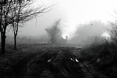 (Walter Daniel Fuhrmann) Tags: rural bw blancoynegro bn blackandwhite gente people losnaranjos nature naturaleza niebla fog campo camino path árbol trees dark