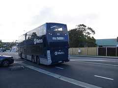 Birkenhead Transport #81 (CR1 Ford LTD) Tags: adl alexanderdennis enviro ukbuses englishbuses newzealandbuses aucklandbuses enviro500 birkenheadtransportenviro500 doubledeckerbus enivro500 birkheadtransport bt birkenhead buses bus