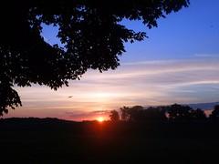 Sunrise (Brett Streutker) Tags: kentucky summer nature forest farm horses sunset sunshine hill mountain trees road cabin bluegrass lexington louisville beautiful grass tree sky field foliage clouds horizon thunderstorm lake river walk rain