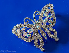"DSC_4450-1  ~ ""MACRO MONDAYS""  ~  ""DEFINING BEAUTY""  ~  ""8/26/18""  ~ (Travlin/Cindy1) Tags: macro mondays macromondays butterfly pin blue sparkles silver 82618 beauty defining deviningbeauty delicate crystals"