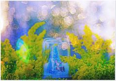 Isadora..... (Jolie ♪ (off)) Tags: fujinon55mmf22m42 fujinon m42 isadora deer snow bubble bokeh manualfocus vintagelens