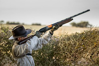 Argentina Luxury Dove Hunting 40