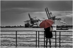 viewpoint (fotoerdmann) Tags: fotoerdmann color red rain elbe canon6dmark2 blackandwhite hafen germany hamburg