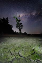 Longneck Lagoon || Sydney (David Marriott - Sydney) Tags: cattai newsouthwales australia au long neck longneck lagoon sydney nsw drought mud crack milky way night