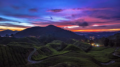 TWB_7550 (xxtreme942) Tags: malaysia cameronhighland sunrise bluehour sun cloud sky teaplantation hill nature dawn outdoor