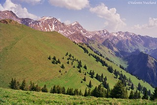 SF__23A_00051 - View on a part of the Vanil's channel mountains, Gruyère region, Switzerland
