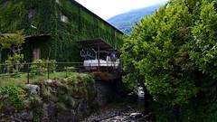 Bateau dans la verdure (BrigitteChanson) Tags: verdure torrent lombardia lombardie pianello del lario italie italia bateau