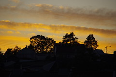 Sunset in Lillesand (Svein K. Bertheussen) Tags: sunset solnedgang silhouette silhuett lillesand austagder norge norway sommer summer