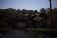 DSC_5033 (satooooone) Tags: nikon d750 snap landscape 風景