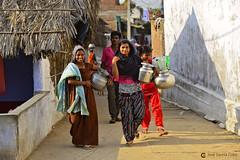 17-04-15 India-Orissa (345) Gopalpur R01 (Nikobo3) Tags: asia india orissa gopalpur tribus etnias people social color culturas travel viajes nikon nikond800 d800 nikon7020028vrii nikobo joségarcíacobo