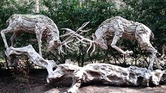 Stag night.. (Mike-Lee) Tags: sculptures thesculpturepark surrey april2017 aug2018 mike jill boatman stagnight