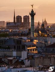 Derniers rayons (A.G. Photographe) Tags: anto antoxiii xiii ag agphotographe paris parisien parisian france french français europe capitale d850 nikon sigma 150600 notredame colonnedejuillet géniedelabastille lesinvalides