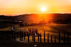 Podere Baccoleno (Fabio Nocera) Tags: nikonflickraward july estate summer tramonto sunset baccoleno 2470 nikkor d850 nikon italy asciano tuscany toscana