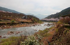 3Road1023_5910-ps (revinhart) Tags: southkorea spring hadong road1023
