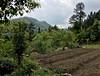 Mountain Farm (cowyeow) Tags: farm farmland travel hunan nature china composition chinese asia asian landscape rural mountain mountains soil
