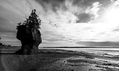 Hopewell Rocks 6 (Chilanga Cement) Tags: nikon nik nikond810 16mm canada newbrunswick fundy rock rocks geology sedimentary water clouds cloud