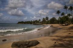 (fabhuleux) Tags: nature portrait plage soleil travel 6d canon france antilles martinique sun mer sea water beach
