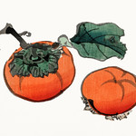 Tomatoes by Kōno Bairei (1844-1895). Digitally enhanced from our own original 1913 edition of Barei Gakan. thumbnail