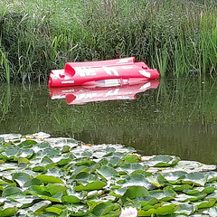 20180814_18 Zwolle (NL) toy in water