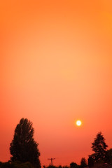 Smoke from fires in CA (Barb Henry) Tags: sunset smoke fires fromcalifornia albany or sun oranges smoky bright silhouettes