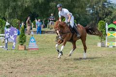 A9909947_s (AndiP66) Tags: springen dubenmoos 2018 18august2018 august pferd horse schweiz switzerland kantonsolothurn cantonsolothurn concours wettbewerb horsejumping equestrian sports springreiten pferdespringen pferdesport sport sony alpha sonyalpha 99markii 99ii 99m2 a99ii ilca99m2 slta99ii sony70400mm f456 sony70400mmf456gssmii sal70400g2 amount andreaspeters stephanhellmüller oberkirch luzern nevada csdubenmoos