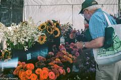 Flowers (davekrovetz) Tags: flower bouquet shopper market garden people leica leicam3 voigtlander heliar film analog ektar kodak