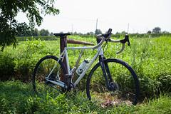 Ielmini Gravel/Tour (In.Deo) Tags: bicycle ielmini gravel touring rohloff speedhub hunt raceface thomson rodeolabs steelisreal sram gebla gatescarbondrive