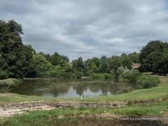 Bath Prior Park Lakes 2018 08 02 #14 (Gareth Lovering Photography 5,000,061) Tags: bath prior park nationaltrust gardens palladian bridge serpentine lakes viewpoint england olympus penf 14150mm 918mm garethloveringphotography