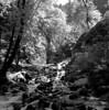 Starvation Creek Falls, June 2011 # 2 (Gary L. Quay) Tags: starvationcreekfalls starvation creek falls water waterfall columbiagorge columbia river gorge oregon tree fall 2011 kodak hc110 hasselblad 500cm gary quay garyquay rollei