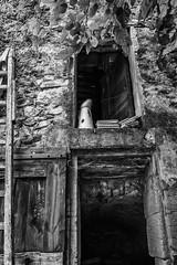 Grange - Luberon (Darkshark78) Tags: puget provencealpescôtedazur frankreich fr
