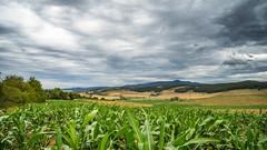 Slovakia, View from Veľké Kršteňany towards Návojovce a Skačany