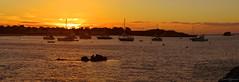 Basin Sunset (madfuzz1982) Tags: autostitch wideangle panorama landscape stitch nikon1aw1 westernaustralia rottnestisland beach sunset boast coast