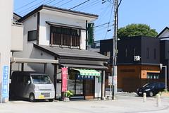 山形城跡 (briandodotseng59) Tags: asia taiwan japan roc jp foreign nikkor nikon travel color coth5 yellow shadow sun day light street life black white art