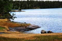 6Q3A3246 (www.ilkkajukarainen.fi) Tags: fagervik suomi finland finlande 2018 eu europa scandinavia ussimaa kesä summer visit travel traveling happy life landscape misema luonto nature lake järvi