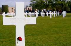 Poignant reminder (M McBey) Tags: cross grave soldier normandy dday france cemetery american rose remembrance privateryan spielberg