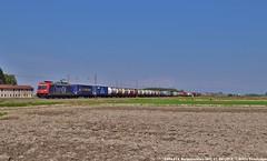 E484 014 (MattiaDeambrogio) Tags: e484 sbb cargo italia chemoil borgolavezzaro terminal intermodale mortara container rotterdam shuttlewise