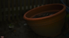 Empty Vessels (MBates Foto) Tags: availablelight bokeh carlzeiss clay color daylight existinglight nikon nikond810 nikonfx outdoors pot zeisslens spokane washington unitedstates 99203