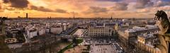 París desde Notre Dame (Alberto Nalda) Tags: parís paris notredame panoramic panorámica estatua gárgola