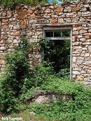 Overgrown (borisnaumoski) Tags: village old ruin house abandoned dilapidated