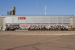 Bayou Fowl Ruinr (Psychedelic Wardad) Tags: freight graffiti ngc koc ruinr lords momscrew moms um tfl fowl bayou