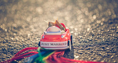 just married (auntneecey) Tags: justmarried bokeh car snails 365the2018edition 3652018 day175365 24jun18