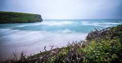 From the cliff (NikNak Allen) Tags: mawganporth cornwall bay coast beach sand sea water ocean sky look view above smooth morning early seascape longexposure