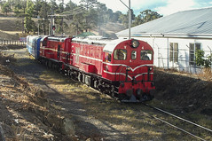 Y4 arriving into Hobart on a DVR excursion in March 2003 - Andrew Dix