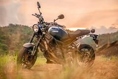 俺 の XSR900 - 13 (Cheng-Xun Yang) Tags: xsr900 yamaha xsr mtm850 バイク ヤマハ motorcycles