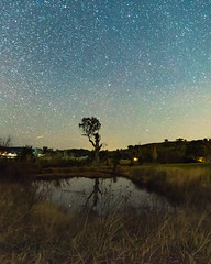 Starry Sky and Small Dam (Merrillie) Tags: night glitter landscape winter astrophotography stars reflections rural newsouthwales astro dam nightsky countryside country astronomy outside pond astrology milkyway tree gresford farm nsw outdoors australia sky