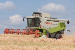 Claas Lexion 550 Combine Harvester cutting Winter Barley (Shane Casey CK25) Tags: claas lexion 550 combine harvester cutting winter barley grain harvest grain2018 grain18 harvest2018 harvest18 corn2018 corn crop tillage crops cereal cereals golden straw dust chaff county cork ireland irish farm farmer farming agri agriculture contractor field ground soil earth work working horse power horsepower hp pull pulling cut knife blade blades machine machinery collect collecting mähdrescher cosechadora moissonneusebatteuse kombajny zbożowe kombajn maaidorser mietitrebbia nikon d7200